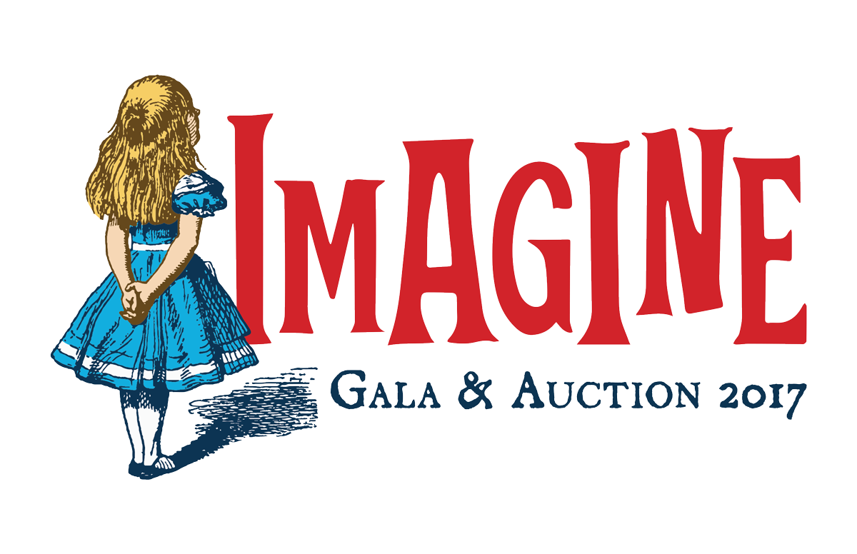 Imagine gala 2017 st charles library foundation for St charles craft show 2017